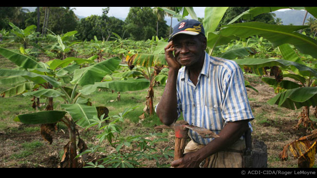 Poor Haitian Farmers Are Left Hopeless After Storm - The ... |Haiti Farming